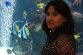 Near Aquarium